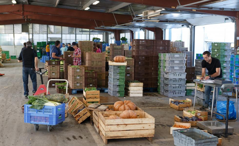 Journée spéciale entreprise pendant le Mois de l'Agroéocologie